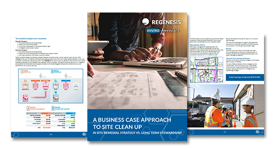 Regenesis E-book: A Business Case Approach to Site Clean Up