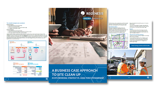 picture of business case ebook cover