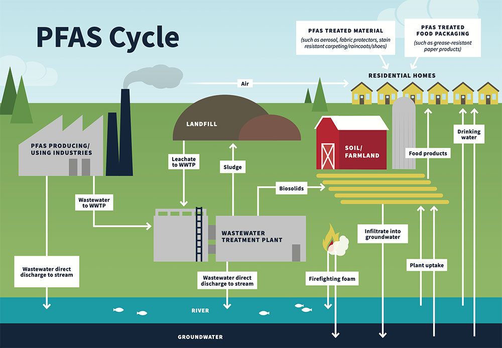 PFAS cycle showing the many different methods PFAS can enter a household through consumer products, food, and drinking water, and then into the environment.