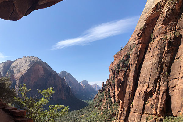 Picture of a green valley between red rock mountains in Zion National Park