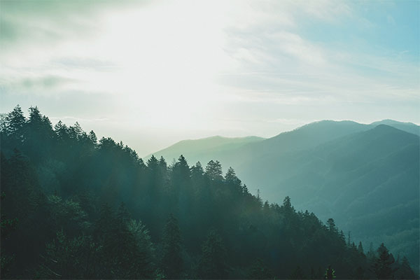 Picture of a tree-covered mountain with haze and sunlight in the Great Smoky Mountains National Park